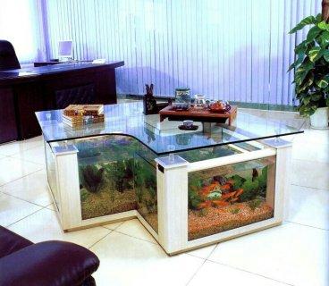 تصاميم ابداعيه لاحواض سمك بأفكارمبتكرة وأسعار مناسبة