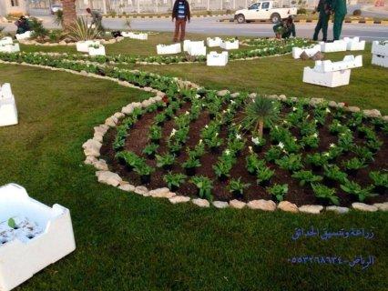 الرياض-تصميم وزراعة الحدائق