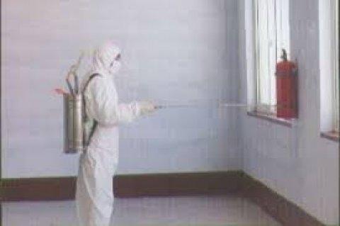 شركة السعد لخدمات مكافحة الحشرات رش مبيد بالرياض 0547404061