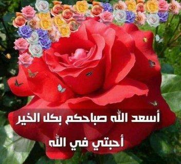 ابحث عن زوجه سعوديه