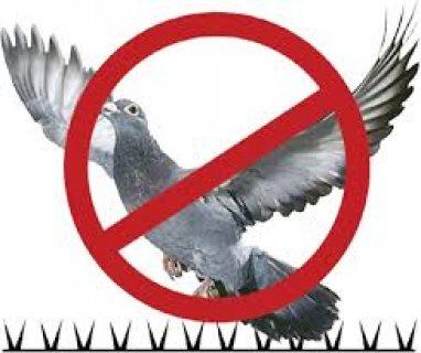 جهاز طارد الحمام والطيور بالرياض0553717112