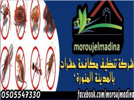 شركة مكافحة النمل الابيض بالمدينة المنورة 0505547330 المدينة المنورة