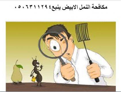 شركة مكافحة حشرات بينبع  0506311294
