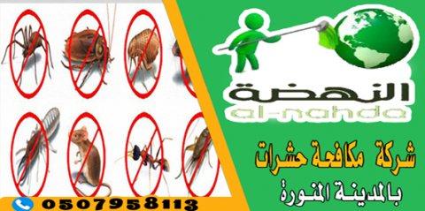 شركة مكافحة حشرات بالمدينة المنورة 0507958113 النهضة