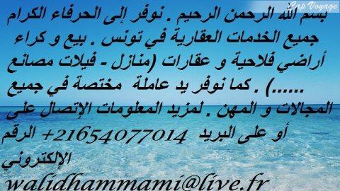 خدمات عقارية في تونس