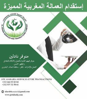 الشركة العربية توفر نادلين شباب من الجنسية المغربية
