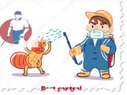شركة المثالي صقور لمكافحة الحشرات 0507060415 ورش المبيدات