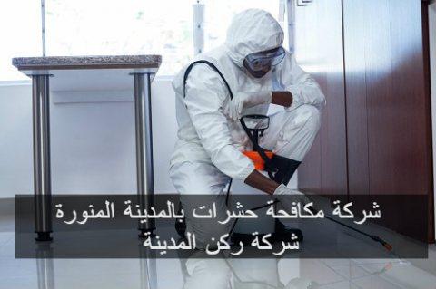 شركة ركن المدينة لمكافحة حشرات بالمدينة المنورة خصم 25% 0506083803