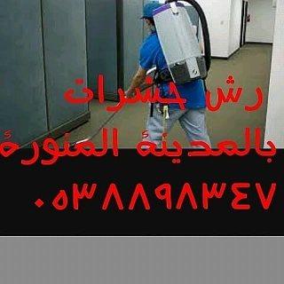 شركة راش حشرات بالمدينة المنورة 0538898347