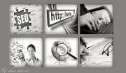 شركة داما شركة استضافة مواقع   شركة تصميم مواقع