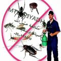 مكافحة الحمام 0546877444 مكافحة النمل الابيض مكافحة الفئران مكافحة صراصير