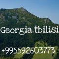 امتلك شقتك الفندقية الاستثمارية بحضن الطبيعة بجورجيا بالتقسيط على 48 شهر