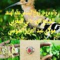 خاتم مروحن لزواج البنت من عظم الهدهد